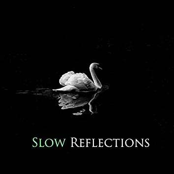 Slow Reflections