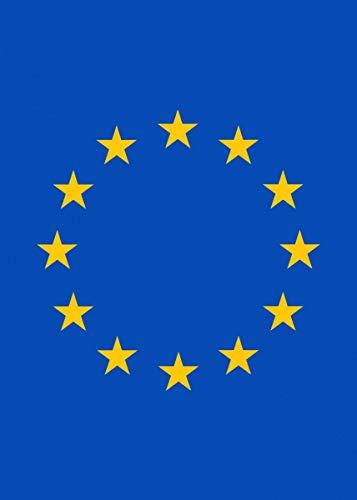 empty EU Flag Brexit Fine Art Wall Poster Sticker Frameless 60cm X 90cm(24X36 Inch)