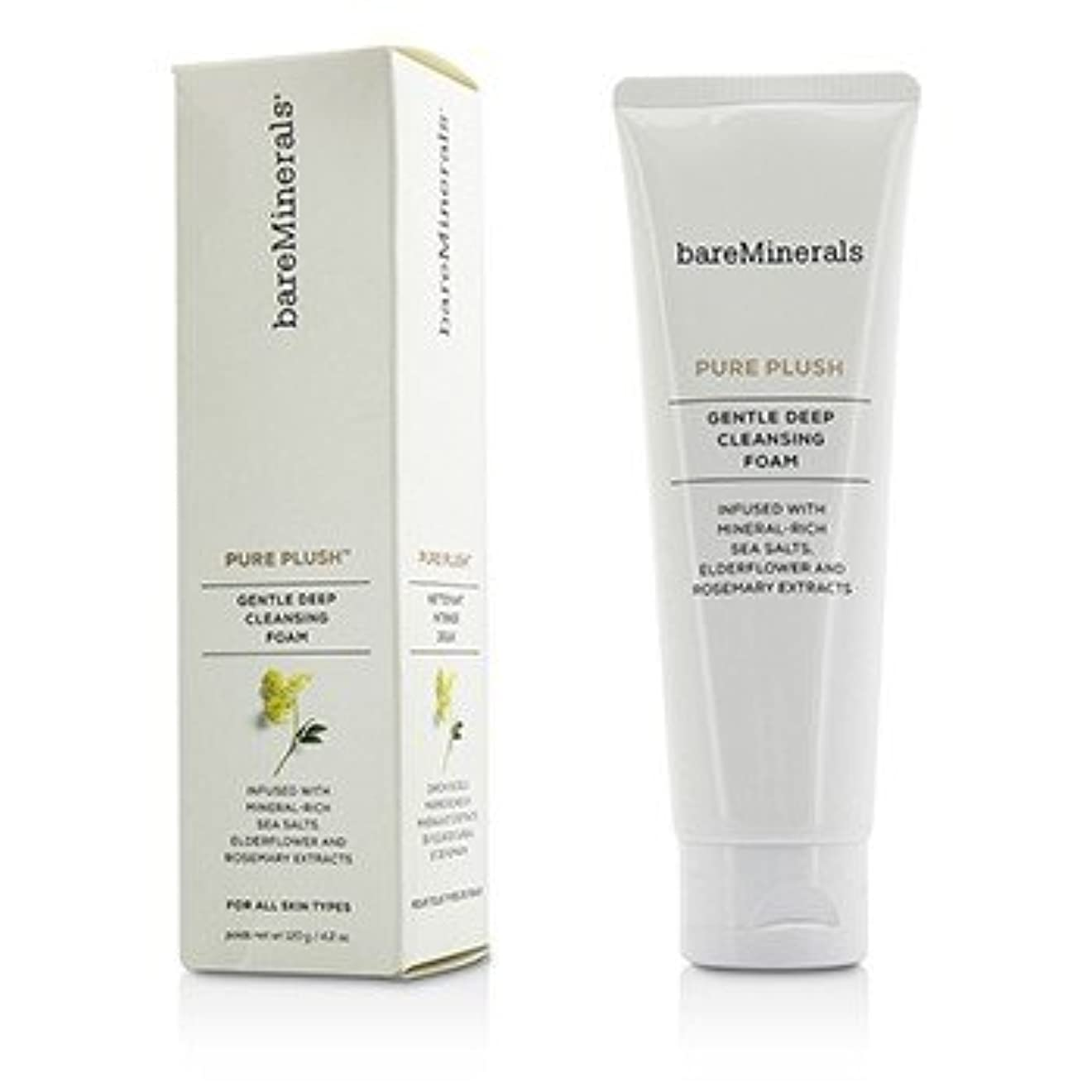 軍大邸宅ファセット[BareMinerals] Pure Plush Gentle Deep Cleansing Foam 120g/4.2oz