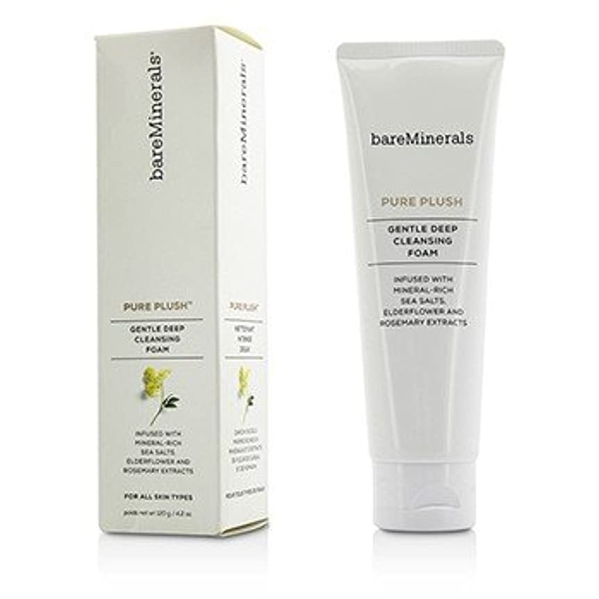 イタリアの荷物くちばし[BareMinerals] Pure Plush Gentle Deep Cleansing Foam 120g/4.2oz