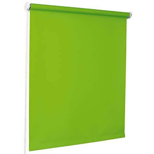 ROLLMAXXX Standard-Rollo Lichtdurchlässig Seitenzug Kettenzugrollo Tageslicht Sichtschutz (180 x 190 cm, Grün)