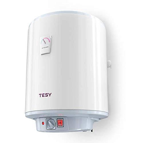 TESY Anticalc - Termo de Agua Eléctrico Vertical de 30 Litros con...