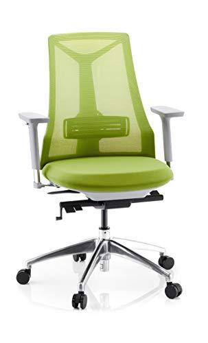 hjh OFFICE 731415 Silla ejecutiva FALUN Grey Malla/Tela Verde Claro Silla ergonómica con Soporte Lumbar Ajustable