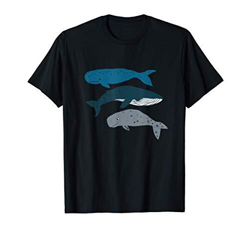 Wal Blauwal Pottwal Beluga Walfisch Tiere Meerestiere Ozean T-Shirt