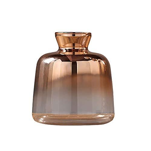 YRW Vaso di Vetro Vaso di Fiori nel Vetro Nordico Placcato Oro Vaso per Decorazioni per La Casa Barattolo di Fiori Secchi Decorazione per Bar (9X11 Cm)