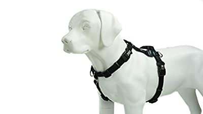 Blue-9 Pet Products Balance Harness Buckle Neck