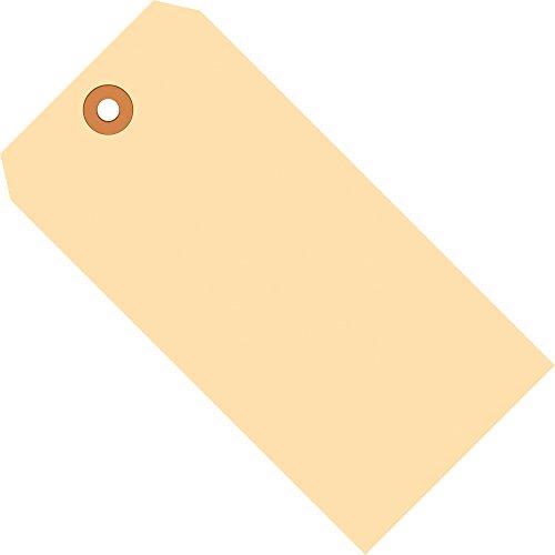 Aviditi G30081 10 Point Cardstock Shipping Tag, 6-1/4
