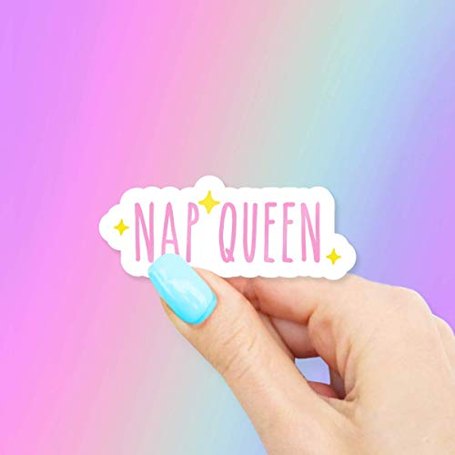 Nap Queen for Laptops and Water Bottles, Made in US