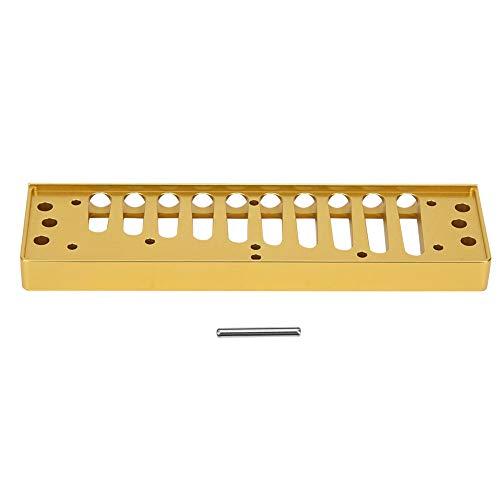 Bruschinger Harmonica pratique à 10 trous Surface polie 10 trous pour Special20 Home Performance Doré