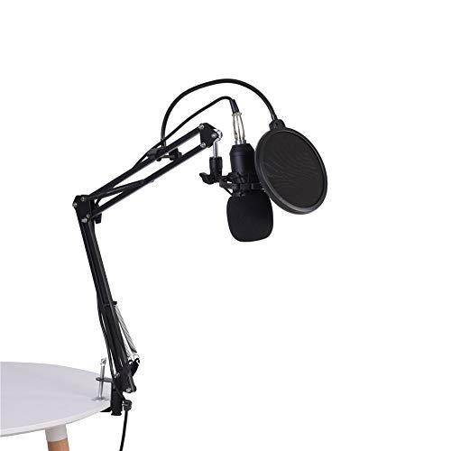 BM-800 Kit de Microphone à condensateur, kit de Microphone condensateur pour Studio Professionnel, Support, Shock Mount, bonnette, pour l'enregistrement et la Diffusion en Studio
