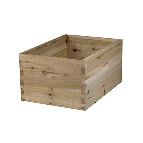 NuBee 8 Frame Deep Brood Box with Frames & Foundations (No Frames & Foundations)