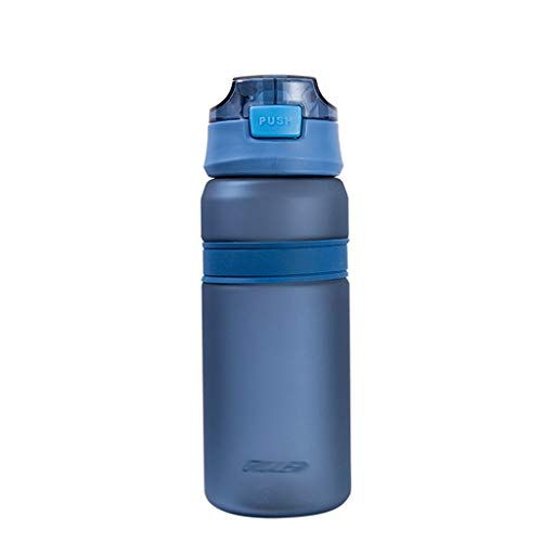 ZYS Water Bottle practical Water Bottles 700ML with Handle &Straw Drinks Bottle BPA-Free Sport Bottle,for Running Gym Outdoors and Day to Day Use (Color : Blue, Size : Matte)