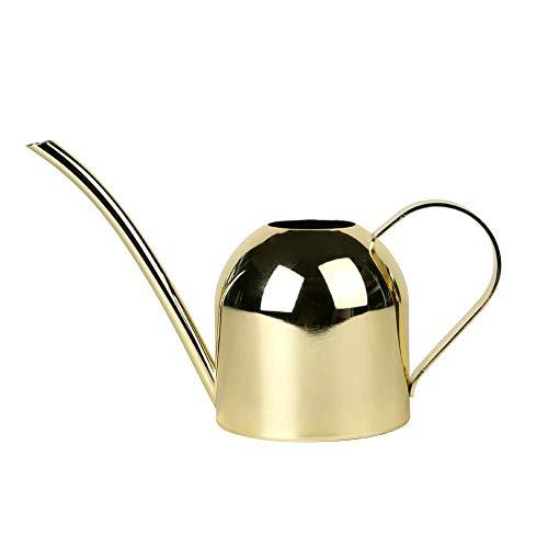 DECMAY - Regadera de acero inoxidable, estilo moderno para riego de plantas de casa con mango cómodo, boquilla larga, cuerpo fuerte para interior/exterior, dorado 500ml