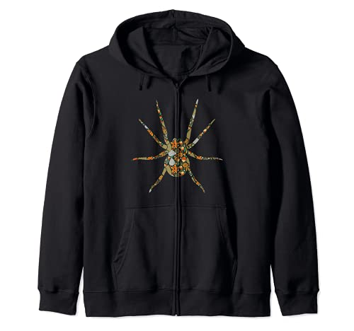Spinne Spinnennetz Terrarium Arachnologie - Haustier Spinne Kapuzenjacke