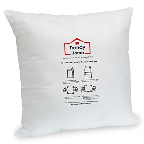 Trendy Home 16' x 16' Premium Hypoallergenic Stuffer Home Office Decorative Throw Pillow Insert, Standard/White (16x16)