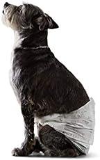 Prodotti per animali domestici di AmazonBasics