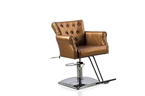 Danyel Beauty Beauty Salon Barber Chair Hair Cutting Chair Salon Beauty Chair Styling Color Fashion Salon Furniture Equipment (Gold)