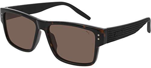 Puma Mens Sunglasses PU0269S 002 Havana Frame/Brown Lenses