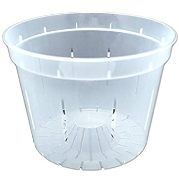 rePotme 8 inch Slotted Clear Orchid Pots 3 Pack  Crystal Clear
