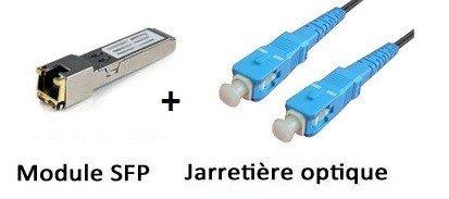 CONECTICPLUS Kit Module MiniGBIC SFP Fibre + câble pour FREEBOX V5 / V6 / Mini 4K