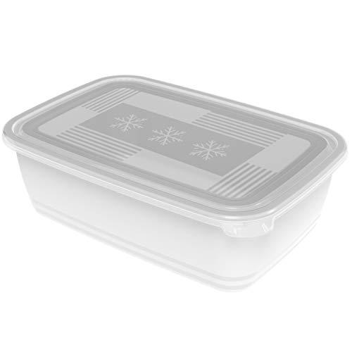 Rotho Freeze Gefrierbox 3,7l mit Deckel, Kunststoff (PP) BPA-frei, transparent, 3,7l (29,5 x 20,0 x 9,2 cm)