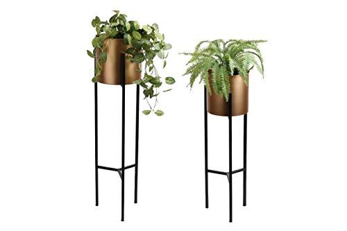 LIFA LIVING Pflanzenständer Set aus Metall, 2 Moderne Dekorative Blumentopfständer für den Innenbereich, Wohnzimmer, Schlafzimmer, Flur, bis zu 5 kg