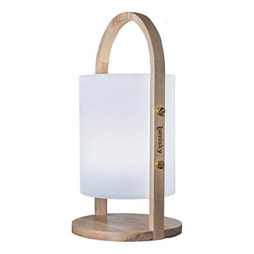 Lumisky Lanterne lumière blanche de jardin avec anse en bois sans fil sur batterie WOODY à LED Polyéthylène rotomoulé, ∅19xH37 cm
