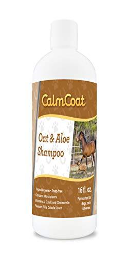 Calm Coat Oatmeal & Aloe Dog Cat & Horse Shampoo - Hypoallergenic & pH Balanced Formula - Mild & Gentle for Itchy Scaling & Sensitive Skin - 16 oz