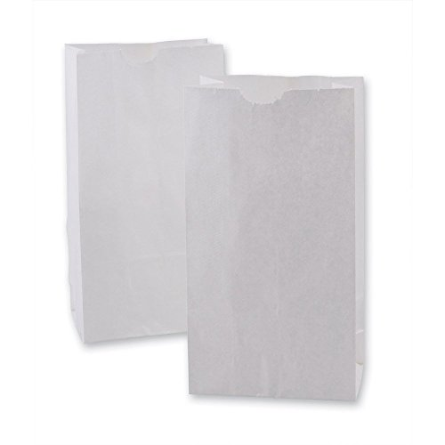 Green Direct White Durable Paper Lunch Bags size small for All Ages Pack of 100