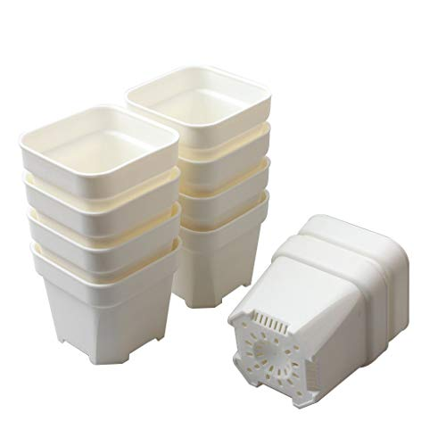 BangQiao 3.15 Inch Plastic Square Flower Nursery Seedlings Pot Planter Container, Pack of 10, White