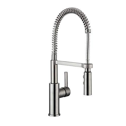 Glacier Bay HD67858-0008D2 Statham Single-Handle Coil Springneck Pull-Down Sprayer Kitchen Faucet,...