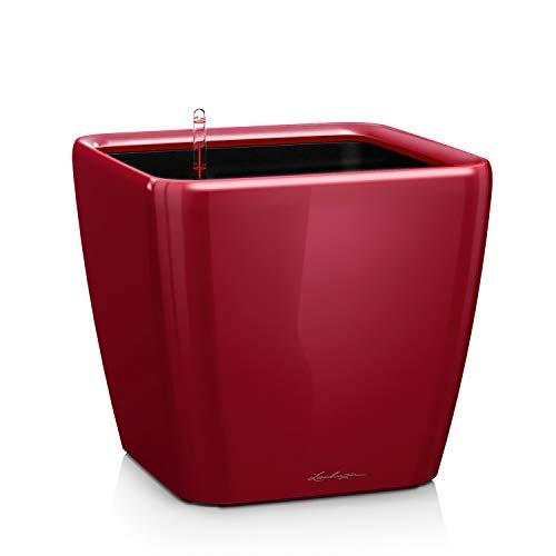 LECHUZA QUADRO Premium LS 21, Scarlet Rot Hochglanz, Hochwertiger Kunststoff, Inkl. Bewässerungssystem, Herausnehmbarer Pflanzeinsatz, Für Innen- und Außenbereich, 16127