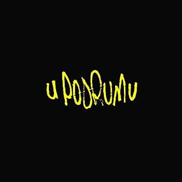 U Podrumu (feat. Mleeksah, P.I.M.P., Bakšiš & Naxy)