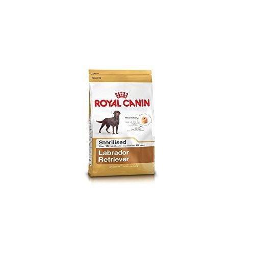 Royal Canin Galletas esterilizadas para perros 2 kg Labrador/Ref