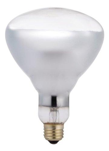 photography light bulbs home depots Philips 416750 Heat Lamp 125-Watt BR40 Clear Flood Light Bulb