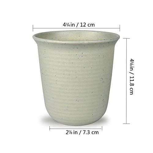 YIWAI Maceta T4U 2.5 Pulgadas De Plástico Redondo para Cactus Suculenta Plantador Cactus Planta Maceta Maceta Maceta Jardín Decoración De Jardín