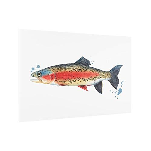 Bilderwelten Spritzschutzglas Küchenspiegel - Farbfang - Forelle - Querformat 40 x 60 cm