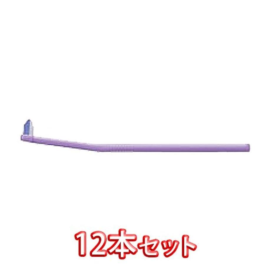 モーターチャップ抑圧するライオン オルソドンティック 歯ブラシ DENT.EX Orthodontic-P 12本入