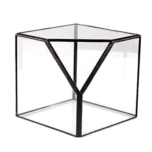 Soporte para exhibición de joyas, caja de almacenamiento para terrario, cristal transparente,...