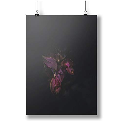 INNOGLEN Beautiful Purple Plant Leaves in The Dark A0 A1 A2 A3 A4 Satin Foto Poster a3645h