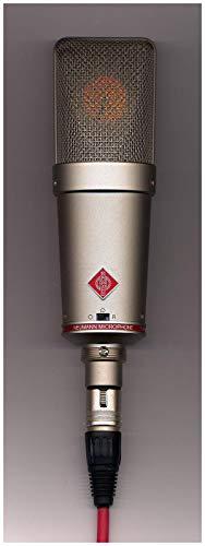 Microfone Condensador Para Estudio - Neumann