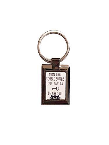 Mon chat semble surpris que j'aie la clé de chez lui ! Porte-clés Atomania