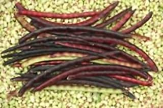 Mississippi Pinkeye 2 Purple Hull Cowpea Seed - Southern Peas Seeds (½oz to 1LB)