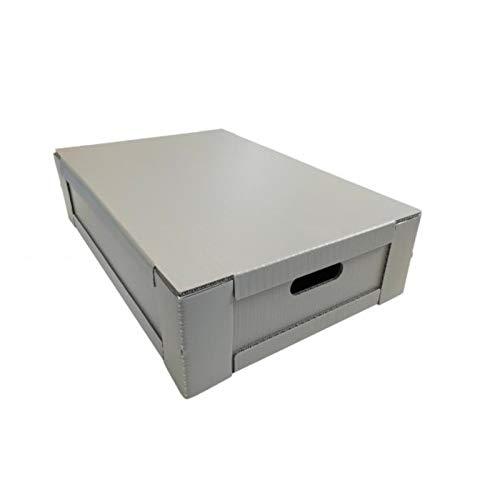 Qleen Transportbox für Rotaqleen...