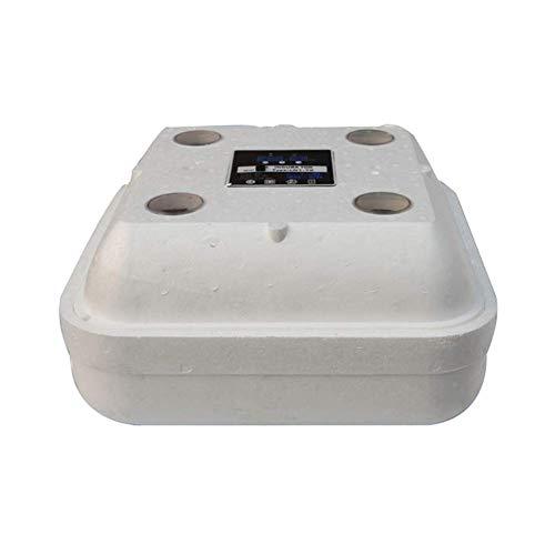 ZHONGXIN Brüter Inkubator, Mini Brutkasten Automatik Eier drehen Dual Power Schaum Brutapparat, Weiß (49x49x21cm)