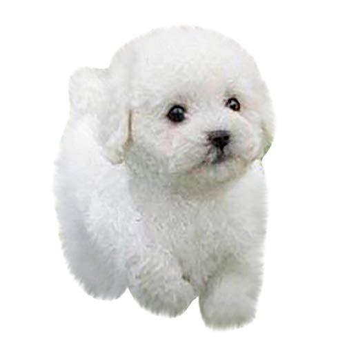 L Soft Toys Realistische Teddy Hund Glückssimulation Hund Pudel Plüsch Spielzeug Handgemachte realistische Figur Spielzeug Hund Plüsch Gefüllte Anim Spielzeug für Kinder C, Farbe: B dedu ( Color : B )