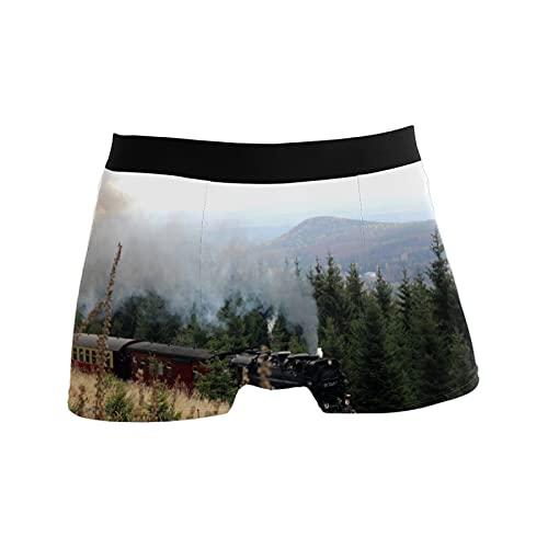 N\O Calzoncillos para hombre Boxer Ropa interior Bañador Trunks Regalos para Hombre Tren Árboles de Vapor Bosque, Un solo color, Medium