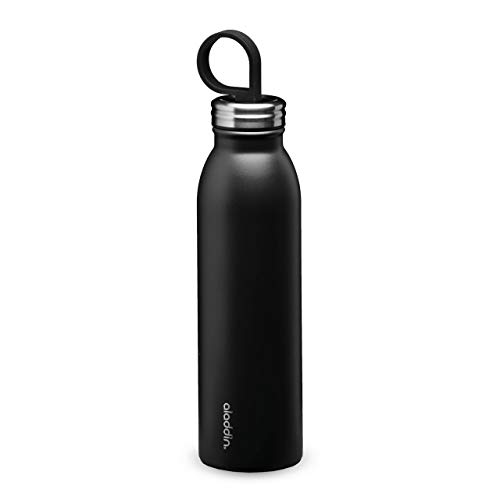 Aladdin Chilled Thermavac Stainless Steel Water Bottle