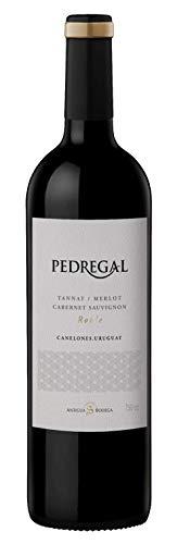 Atlantik Weine, Pedregal Cuvée 2015 (Tannat, Merlot, Cabernet Sauvignon), Rotwein aus Uruguay, Südamerika, trocken (1 x 0,75l)
