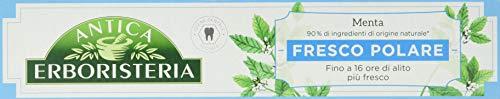 Antica Erboristeria, Zahnpasta, 1 x 75 ml Polare Frische